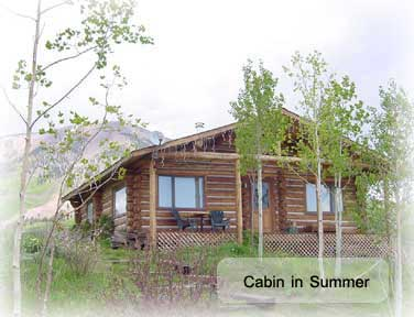 amazing hunting summer and wedding cabin in gunnison colorado