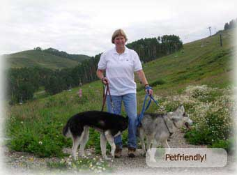 ski in and out  pet friendly 2 bedroom condo crested butte