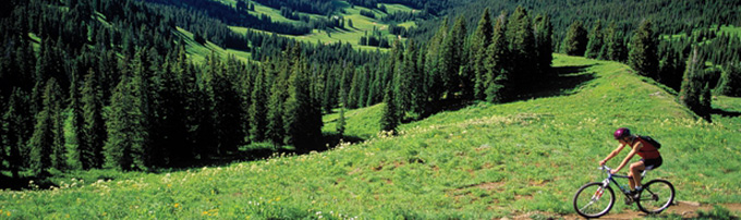 crested butte vacation rental condos