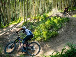 griggs orthopedics mountain bike series