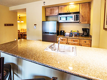 crested butte 1 bedroom condo