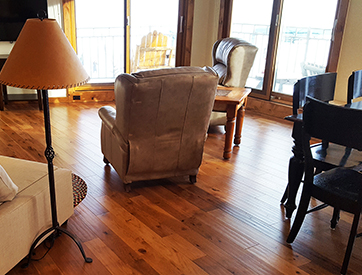 ski in and out    2 bedroom condo crested butte
