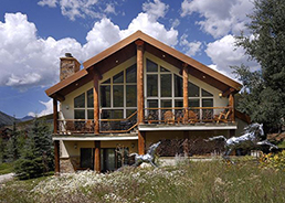 dog friendly rental in crested butte