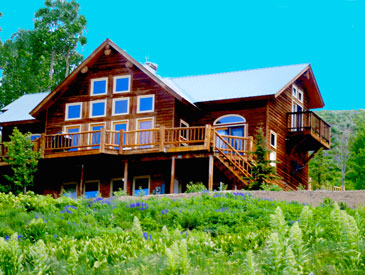 Robinson house in Crested Butte - pet friendly in Crested Butte