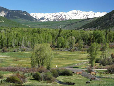 3 rivers cabins in almont colorado petfriendly for Cabins near crested butte co