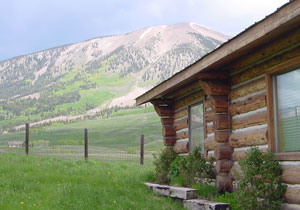 Crested butte weddings for Cabins near crested butte co
